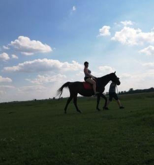 lekcję jazdy konnej