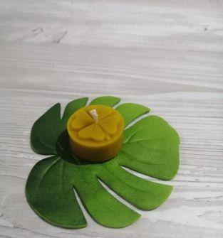 Świece z wosku pszczelego- koniczynka