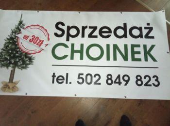 Choinki