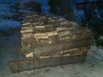 Drewno topola